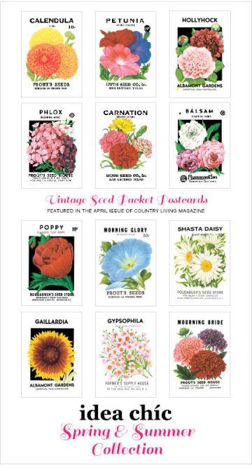 wpid-spring-catalog-front-image3.jpg.jpeg